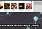 How to Configure Yet Another Related Posts WordPress Plugin
